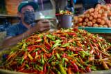 Kementan subsidi distribusi cabai rawit stabilkan  pasokan pangan