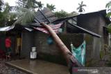 Seorang warga terluka tertimpa pohon akibat angin kencang di Aceh