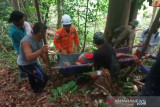 Pencari madu ditemukan meninggal di hutan Natuna
