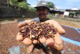 Kunyah cengkeh-kayu manis tingkatkan kadar oksigen hoaks