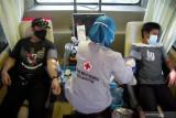 Stok plasma konvalesen PMI Makassar kosong sejak Mei 2021
