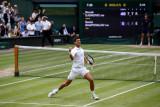 Djokovic bertemu Berrettini di final Wimbledon
