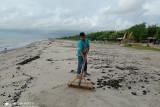 Limbah hitam berminyak cemari wisata pantai di Lampung Timur