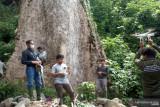 Kebun durian Koto Malintang diusulkan  jadi kawasan ekosistem esensial