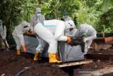Sejumlah petugas dengan alat pelindung diri lengkap berusaha memasukan peti berisi jenazah pasien COVID-19 di lokasi pemakaman khusus COVID-19 di Kelurahan Maliaro, Kota Ternate, Provinsi Maluku Utara, Selasa (13/7/2021). Berdasarkan data Satgas COVID-19 Maluku Utara, secara komulatif kasus meninggal dunia akibat COVID-19 di Kota Ternate mencapai 51 orang. (ANTARA FOTO/Harmoko Minggu)
