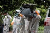 Sejumlah petugas dengan alat pelindung diri lengkap mengangkat peti berisi jenazah pasien COVID-19 yang meninggal dunia menuju ke lokasi pemakaman khusus COVID-19 di Kelurahan Maliaro, Kota Ternate, Provinsi Maluku Utara, Selasa (13/7/2021).  (ANTARA FOTO/Harmoko Minggu)