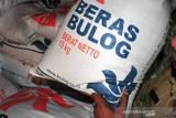 Bulog Baubau pastikan stok pangan aman hingga usai Lebaran Idul Adha