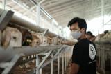 Sentra Ternak Lampung berdayakan anak-anak muda putus sekolah