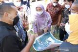 Sumbar kembangkan Minang Science Techno Park di  Tanah Datar