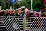 Sejumlah mahasiswi berunjuk rasa sambil mengenakan masker sesaat sebelum aparat mengamankan sejumlah pendemo di depan Kantor Wali Kota Ambon, Provinsi Maluku, Kamis (15/7/2021).  (ANTARA FOTO/FB Anggoro)