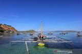 Ikuti petualangan ke Desa Wisata Papagarang