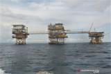 Sektor migas menjadi andalan penuhi kebutuhan energi di masa depan