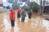 Sejumlah kabupaten di Kalteng terdampak banjir