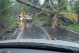 PLN UP3 Manado telah perbaiki jaringan listrik putus akibat cuaca ekstrem