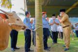 Kabupaten Musi Banyuasin prioritaskan warga isolasi mandiri terima daging kurban