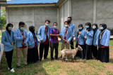 Kukerta UNRI bantu satu ekor kambing ke Masjid Al Ikram sungai Pakning