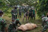 Danpuslatpur: Jadikan momentum kurban untuk berbagi di tengah pandemi