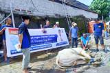 NasDem Sulteng bagikan daging kurban ke pemulung-panti asuhan
