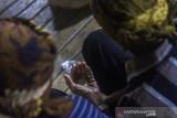 Sejumlah Balian memanjatkan doa dengan menggenggam beras saat aruh (ritual) Bawanang (pesta panen padi) di Balai Adat Dusun Bayawana, Kabupaten Hulu Sungai Tengah, Kalimantan Selatan, Rabu (21/7/2021) dini hari. Masyarakat dayak di kaki Pegunungan Meratus melakukan tradisi tahunan Aruh Bawanang yang bertujuan untuk bersyukur dari hasil panen padi yang melimpah pada tahun ini dan mempertahankan tradisi adat budaya dayak meratus serta penyampaian doa dan harapan. Foto Antaranews Kalsel/Bayu Pratama S.