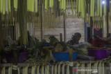 Seorang Balian menaruh sajian saat aruh (ritual) Bawanang (pesta panen padi) di Balai Adat Dusun Bayawana, Kabupaten Hulu Sungai Tengah, Kalimantan Selatan, Rabu (21/7/2021) dini hari. Masyarakat dayak di kaki Pegunungan Meratus melakukan tradisi tahunan Aruh Bawanang yang bertujuan untuk bersyukur dari hasil panen padi yang melimpah pada tahun ini dan mempertahankan tradisi adat budaya dayak meratus serta penyampaian doa dan harapan. Foto Antaranews Kalsel/Bayu Pratama S.