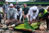 Pangdam XVII/Cenderawasih serahkan hewan kurban