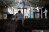 Kasus positif COVID-19 di Sulawesi Tenggara tambah 206