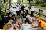 Wali Kota Kendari Berkurban 3 Ekor Sapi Untuk Petugas Kebersihan