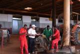 Kehadiran TSE group ciptakan sumber ekonomi baru di Papua