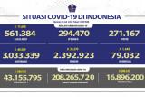Kasus harian positif COVID-19 RI bertambah 49.509 orang