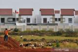 Konsultan: Insentif PPN stimulus penjualan  rumah tapak di triwulan II