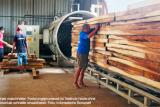 Kayu jati Indonesia ramah lingkungan banyak diminati di Jerman