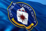 Veteran CIA pemburu Osama pimpin penyelidikan