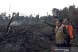Polisi tetapkan tiga tersangka kebakaran Hutan Lindung Bukit Suligi Riau