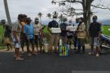Kementan bantu pupuk cair petani Samaturu Kolaka