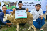 LinkAja bersama Dompet Dhuafa berbagi hewan kurban