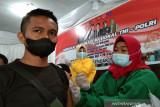 Kasus positif COVID-19 di Sulawesi Tenggara bertambah 257