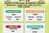 Kasus konfirmasi positif COVID-19 di Lampung bertambah 517