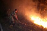 Antisipasi kebakaran hutan, Perhutani Banyumas Barat giatkan patroli