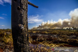 Asap membubung tinggi dari lahan yang terbakar di Desa Ujung Batu, Kabupaten Tanah Laut, Kalimantan Selatan, Minggu (1/8/2021). Berdasarkan data Kementerian Lingkungan Hidup dan Kehutanan (KLHK) selama periode 1 Januari hingga 30 Juni 2021, luas kebakaran hutan dan lahan (Karhutla) di Provinsi Kalimantan Selatan mencapai 876 hektare serta Badan Meteorologi Klimatologi dan Geofisika (BMKG) telah mengeluarkan peringatan dini musi kemarau yang dapat meningkatkan potensi terjadinya Karhutla. Foto Antaranews Kalsel/Bayu Pratama S.