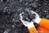 IESR minta pemerintah persiapkan peta jalan transisi batu bara