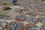 Pekerja menjemur kerupuk kulit ikan di desa Kenanga, Indramayu, Jawa Barat, Selasa (3/8/2021). Pengusaha kerupuk kulit ikan mengaku saat Pemberlakuan Pembatasan Kegiatan Masyarakat (PPKM) tetap berproduksi, meskipun dengan mengurangi jumlah produksi hingga 50 persen dari kondisi normal. ANTARA FOTO/Dedhez Anggara/agr