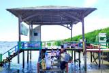 Yayasan Kalla edukasi pelestarian lingkungan kepada anak-anak pesisir