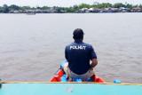 Buaya semakin sering muncul di Sungai Mentaya