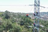 PLN tuntaskan pembangunan tiga menara perkuat kelistrikan di Pulau Timor