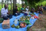 TRADISI KENDURI TURUN SAWAH SAAT PADA DARA. Petani menggelar ritual doa bersama dan dilanjutkan peusejuek (tepung tawar) pada perayaan tradisi kenduri turun ke sawah saat padi tumbuh dara di Desa  Lamsie, Kecamatan Cot Glie, Kabupaten Aceh Besar, Aceh, Kamis (5/8/2021). Tradisi kenduri turun ke sawah saat padi tumbuh dara atau padi mulai besar dan berperut itu bertujuan  agar tanaman padi terhindar dari hama dan mendapatkan hasil yang melimpah. ANTARA FOTO/Ampelsa.