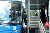 Di Hari Perhubungan, Pekanbaru luncurkan 13 bus pengumpan