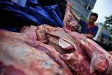 Penjualan daging beku di DKI jadi peluang bisnis saat pandemi COVID-19