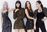 BLACKPINK rayakan lima tahun debut grupnya dengan