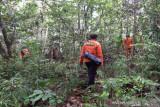 SAR belum temukan lansia hilang di hutan Konawe meski lima hari dicari