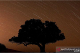 Lapan sebut puncak hujan meteor perseid terjadi 12-13 Agustus 2021
